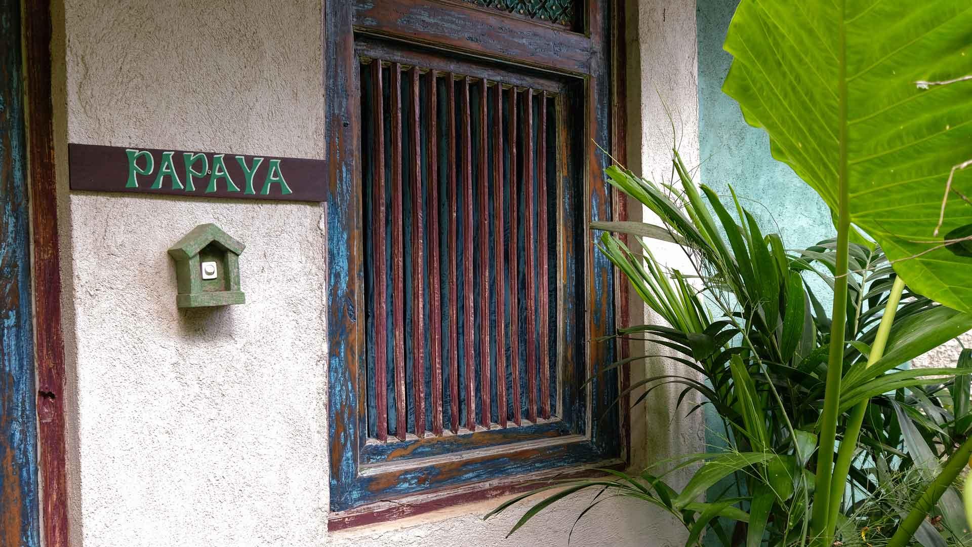 The Papaya Suite 3